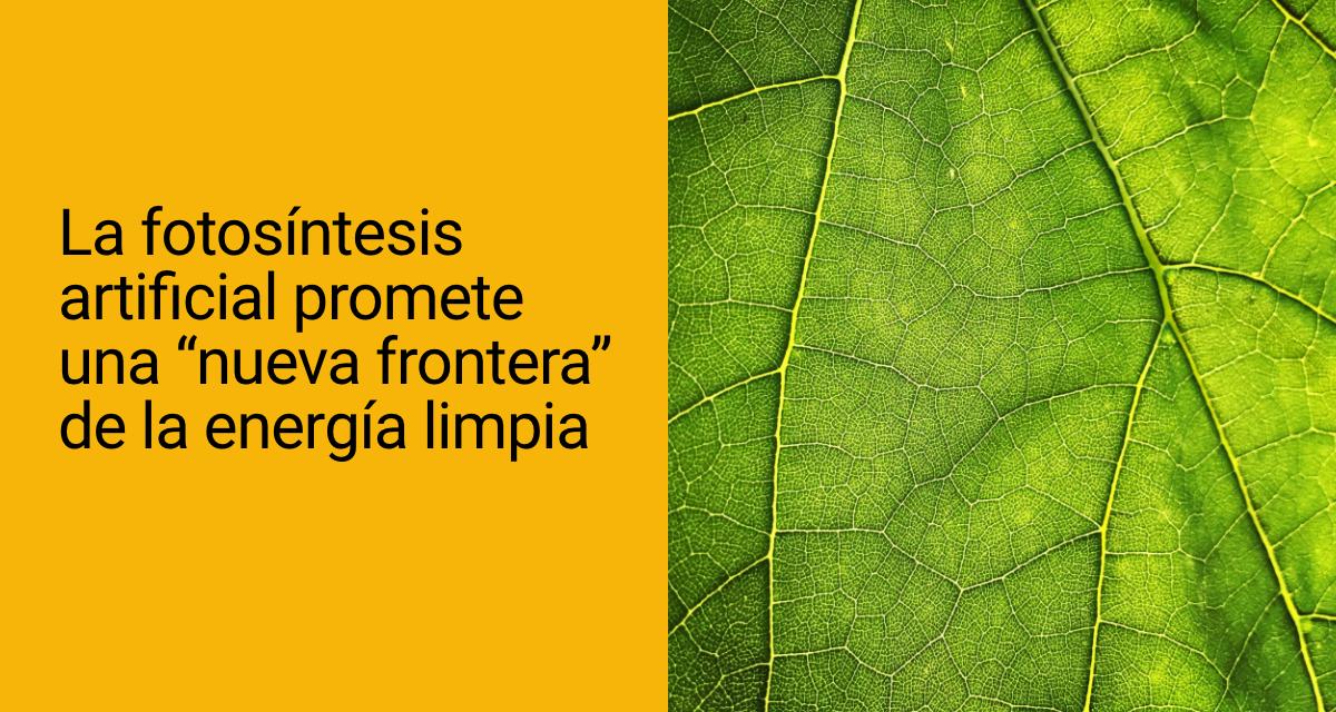 La fotosíntesis artificial promete una «nueva frontera» de la energía limpia